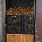 生姜の保存(保存庫の様子)