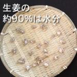 【生姜の90%は水分】