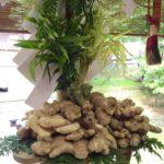 波自加彌(はじかみ)神社の生姜祭りに参加してきました。