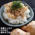 【旬を逃さず!生姜たっぷり、たけのこ肉みそごはん】