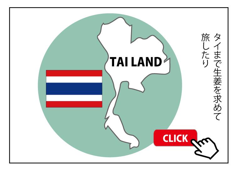 タイの生姜